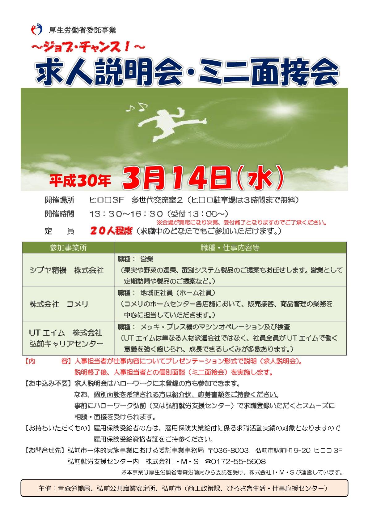 ミニ面接会3月14日リーフレット2.jpg